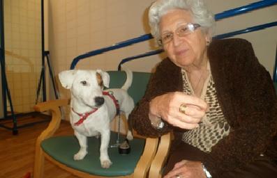 Terapia asistida con perros en la Residencia San José