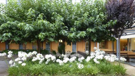 El jardín es un espacio ideal para disfrutar de la naturaleza